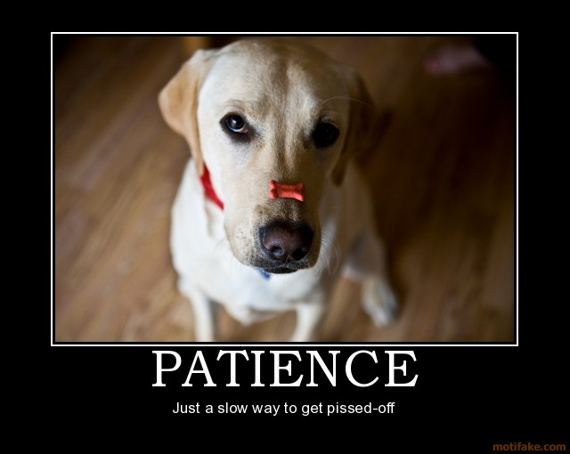 patience 3