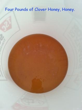 Four pounds of clover honey.